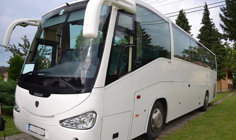 Denmark: Buses rental in Haslev, Region Zealand